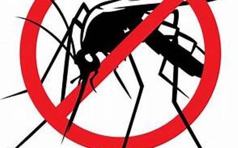 komarec